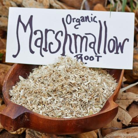 organicroot