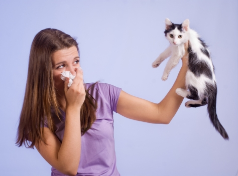 Is sneezing a sign of a cold gonaturalph but does sneezing mean that you will be getting a cold or flu anytime soon the answer is maybe when a person sneezes it may be because of 3 reasons ccuart Image collections