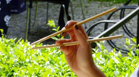 eating-chopstick