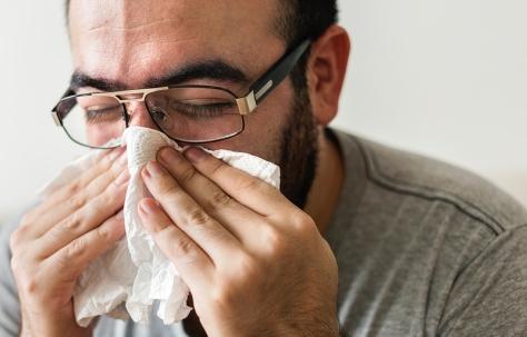 allergy03