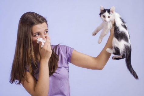 woman-allergic-to-a-kitten